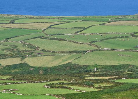 800px-fields_near_zennor