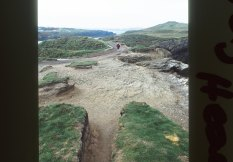 Eroded banks and ditches of Trevelgue Head.