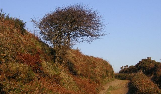 The Tinners Way – An Old Track Through Time.