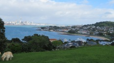 The view south (west) towards the city and township of Devonport - Torpedo Bay is in the foreground.